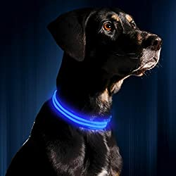 "LED Dog Collar, USB Rechargeable, Large (19 - 24"" / 49 - 61cm), Royal Blue"