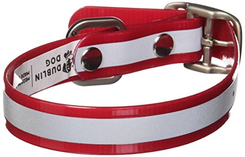 Dublin Dog 12.5-Inch to 17-Inch KOA Reflective Waterproof Dog Collar, Medium, Red