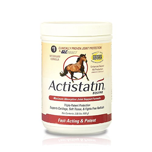 Actistatin Equine Powder, 2.05 lbs – Clinically-Proven Veterinary Joint Support Supplement for Horses: Glucosamine, Chondroitin, Manganese – Supports Joints, Cartilage, Soft Tissue & Ligaments