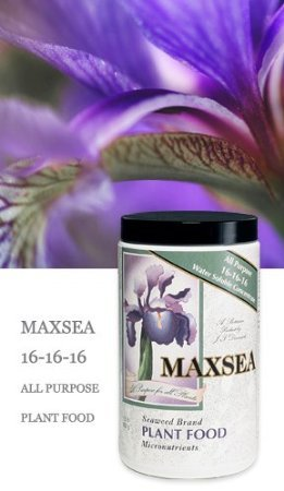 - Maxsea Grow 16-16-16 1.5 Lbs. Water Soluble Seaweed Plant Food Fertilizer