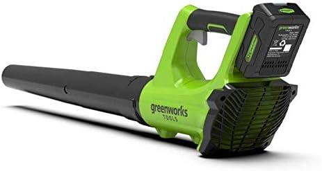 Greenworks Tools 372402207 Soplador Inalámbrico, 24 V, Verde