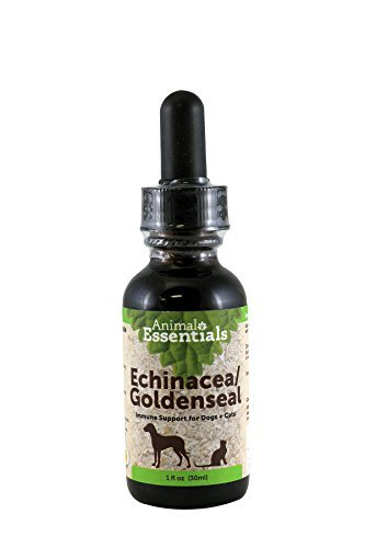 Animal Essentials Echinaceal Goldenseal 1fl. oz