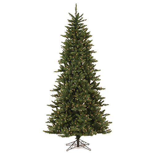 Vickerman 65' Camdon Fir Slim Artificial Christmas Tree with 550 Warm White LED Lights Camdon Tree
