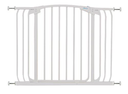 What Is The Best Safety Gate Auto Close Out There On The