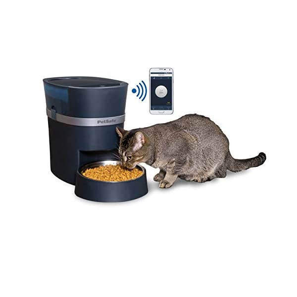 PetSafe Smart Feed Automatic Dog and Cat Feeder, Wi-Fi Enabled Pet Feeder, Smartphone App for iPhone and Android 1