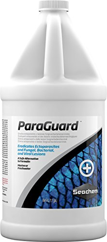 ParaGuard, 4 L / 1 fl. gal. (Best Filter For Flowerhorn)