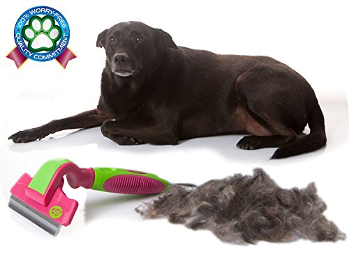 2PET Deshedding Dog Brush FWIPER by for Small, Medium & Large Sized Dogs, Cats & Other Pets – Reduces Undercoat Shedding by 95% - Designed to Groom Medium to Short Hair. Large 4 Inches Flush Pink ()