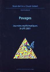 Pavages : Journées X-UPS 2001