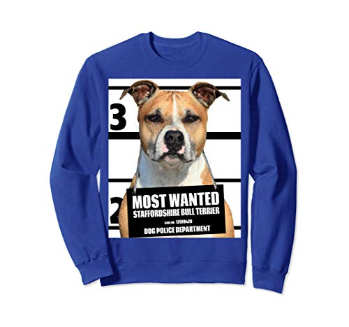- Most Wanted Staffordshire Bull Terrier Dog Sweatshirt C