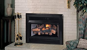 Amazon.com: Natural Gas Vent-Free Fireplace Insert with Millivolt ...