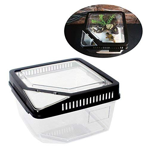 Pet Reptiles Amphibians Cage Feeding Breeding Box with Thermometer Mount Hole for Spider Insect Lizard Frog Rodent Habitat