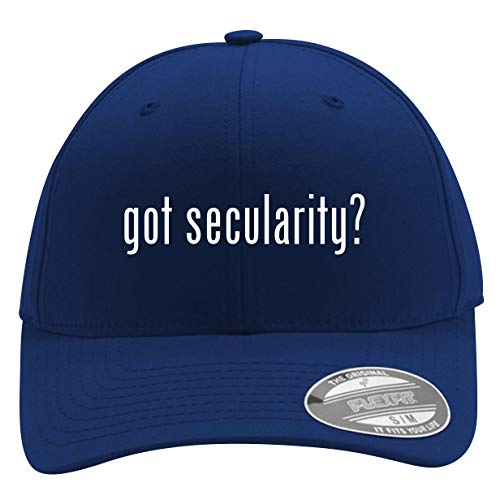 got Secularity? - Men's Flexfit Baseball Cap Hat, Blue, Small/Medium (Humanism Workbook)