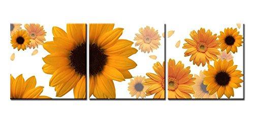 arts sunflower seeds - 5