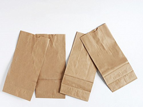 BonBon Paper Kraft Brown Paper Treat Lunch Bags (Small 100 (Wholesale Treat Bags)