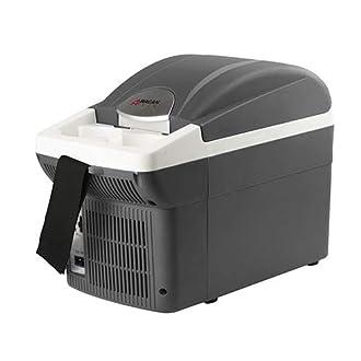 Car Cooler/Warmer Image