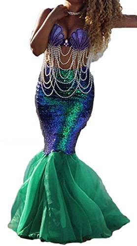 Rachel Charm Women's Mermaid Costume Lingerie Halloween Cosplay Fancy Sequins Long Tail Dress with Asymmetric Mesh Panel (XL, -