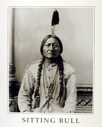 Bull Indian Print (Sitting Bull Native American Indian Chief Wall Decor Art Print Poster (16x20))