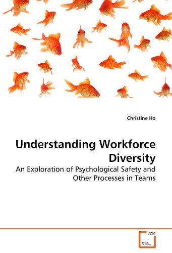 Understanding Workforce Diversity: An Exploration of Psychological Safety and Other Processes in Teams