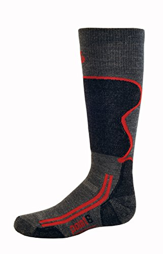Point6 Kid's Ski Light Over The Calf Socks, Gray, Medium (Point6 Ski)