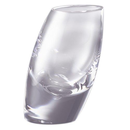 Tilt Shot Glasses (Set of 2)