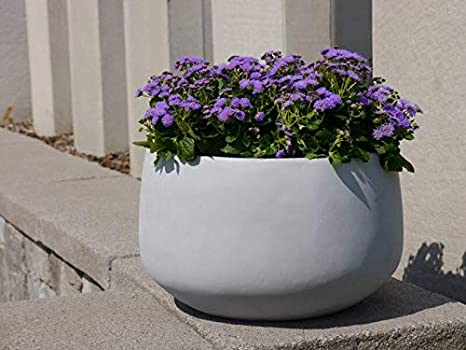 /ØxH : /Ø32x20 cm Pflanzk/übel Pflanzschale Como aus Fiberglas in betongrau Dekoschale Gr/ö/ße Pflanzgef/ä/ße