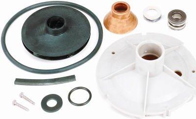 Well Pump Overhaul Kit by Pentair