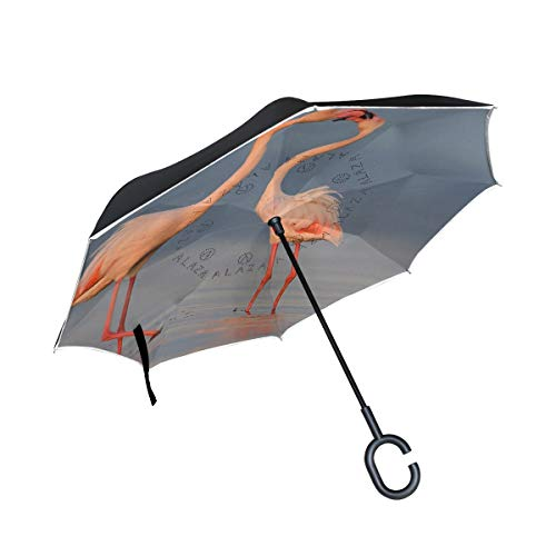 Ladninag Inverted Reverse Umbrella Van Gogh Irises Flower Windproof for Car Rain Outdoor