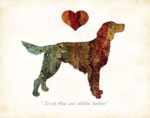 Irish Red and White Setter Dog Breed Watercolor Art Print by Dan Morris