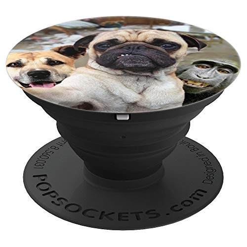 Funny Dog & Monkey Animal Selfie - Phone Mount, Knob 2373 -