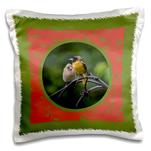 3dRose Beverly Turner Bird Photography - Baltimore Oriole, Female Cardinal on Branch, Coral Leaf Round Frame - 16x16 inch Pillow Case (pc_308965_1)