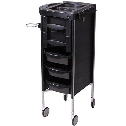Salon Beauty Equipment Hair Storage Trolley Cart TR-60