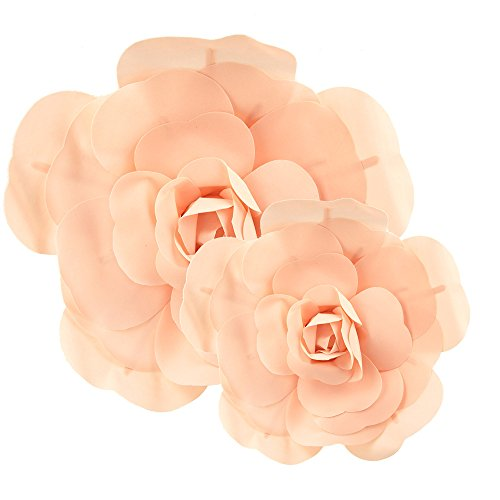 Homeford Rose Foam Wall Flowers, Assorted Sizes, 2 Piece (Blush)