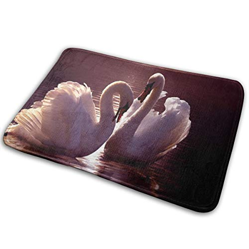 MFLLY Door Mat Personalized Shower Home Interior Exterior Floor Rug Coral Velvet White Swan 15.7x23.6 in