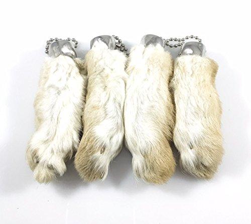 Amazon.com  Rabbit Rabbits Foot Keychain Natural Snow White 4 Pcs ... a22b5b58ab