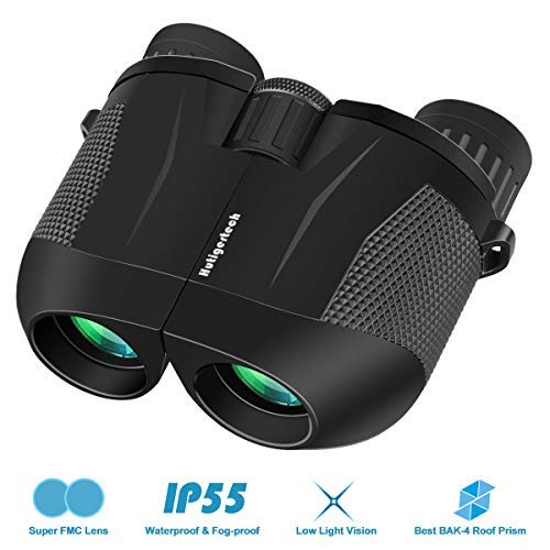 High Power Binoculars,10×25 HD Binoculars for Adults with Low Light Night Vision,BAK4 Prism,FMC Lens,Fogproof & Waterproof,Compact Folding Binoculars for Bird Watching Hunting Travelling Concerts