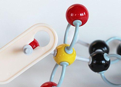 molecular model kit instructions