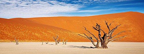 Reptile Habitat, Terrarium Background, orange Desert with Tree, 18 x48