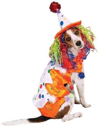Zack & Zoey Medium Halloween Class Clown Dog (Class Clown Dog Costume)