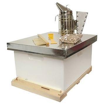 Delicieux HARVEST LANE HONEY Beginner Beekeeper Kit