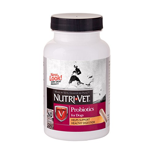 Nutri-Vet Soft Chew Probiotic for Dogs, 60 - Chewable Vitamins Nutri