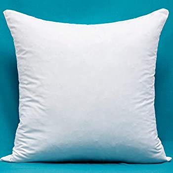 Amazon Com Cotton Fabric Pillow Inserts Filled With Down