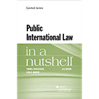 Public International Law in a Nutshell (Nutshells) (English Edition)