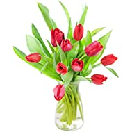 10 Fresh Cut Red Tulips from Holland with Vase - by KaBloom