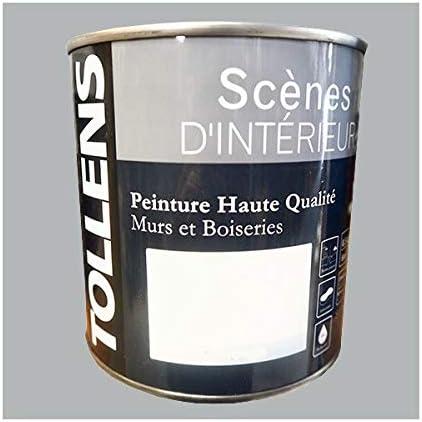Tollens Peinture Acrylique Scènes D Intérieur Satin Gris