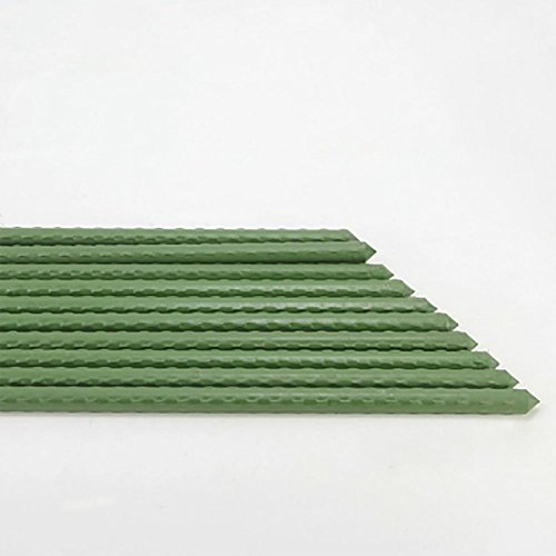 ( Pack of 10) Heavy Duty Plant Support Sturdy Stakes, Diameter 11mm by 24-Inch Length GreeGarden