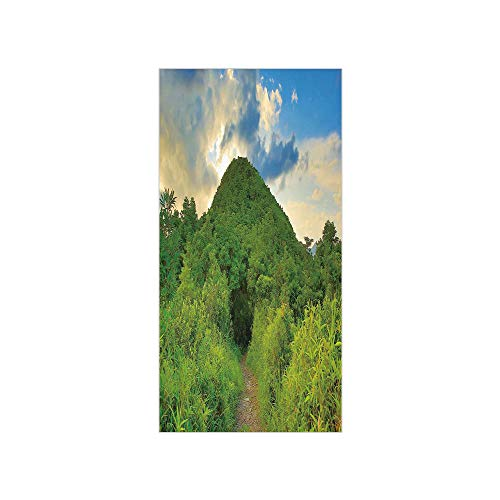 3D Decorative Film Privacy Window Film No Glue,Nature,Mountain Path Covered by Trees Foliage Bushes Highland Woodland Landscape,Fern Green Sky Blue,for Home&Office