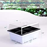 Plant Seedling Trays for Seed Germination