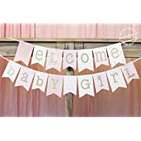Pink and Gold Baby Shower Banner   Welcome Baby Girl 1.0