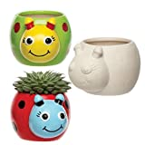 Baker Ross Ladybird Ceramic Planters for Kids' Creative Art Supplies & Decorations (Pack of 4)