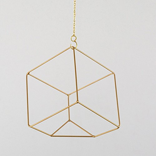 L;IAN Hanging Wall Flower Rack, Plant Stand Nordic Decorative Flower Stand Small Cubic Brass Frame Wall-Mounted Planter(Side Length: 5.9 in) (Color : Gold) by L;IAN